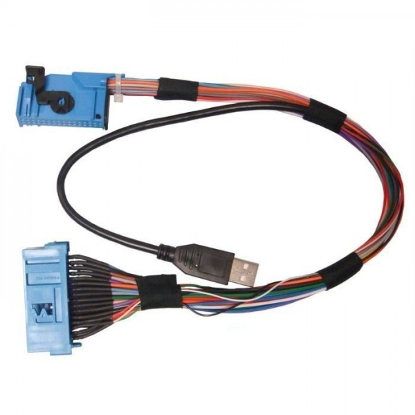Cable adaptateur USB Blue&Me